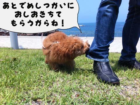 22_20110603232919.jpg