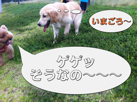 23_20111003004339.jpg