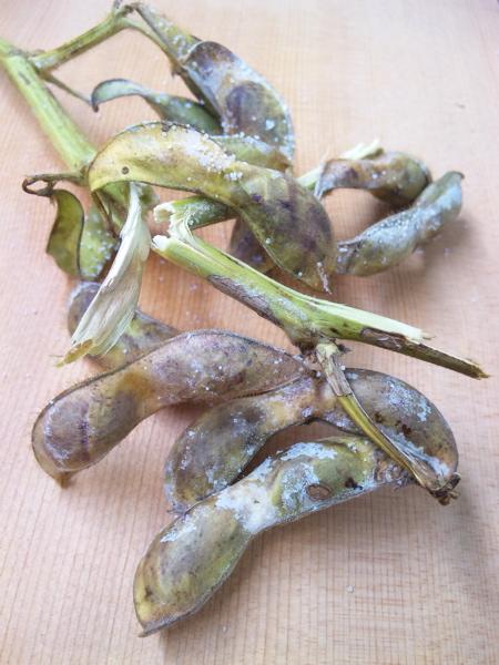 焼き枝豆1