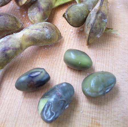 焼き枝豆2