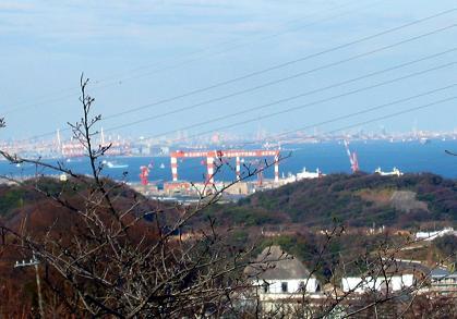 横須賀・塚山公園から東京スカイツリー方面を望む(2011年1月1日)