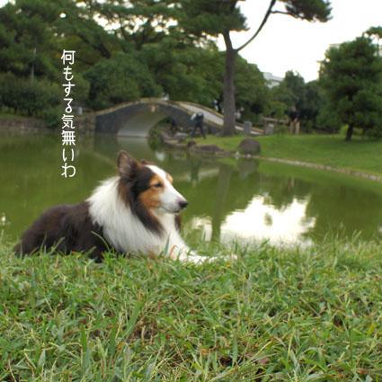 010_20111026121344.jpg