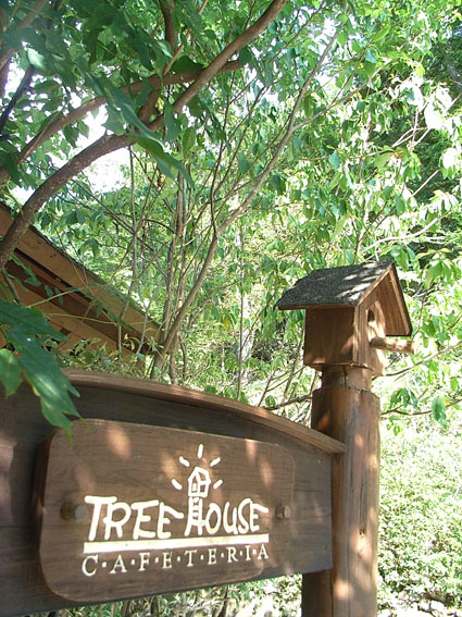 2treehouse
