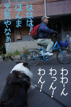 006ほえる2