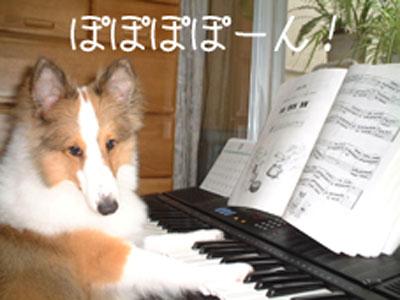 011ピアノ.JPG