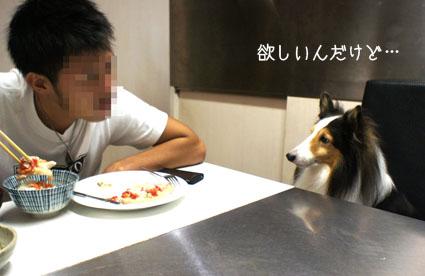 001食いたい