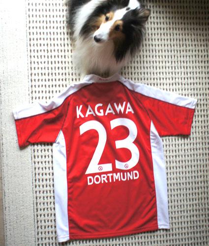 http://blog-imgs-34.fc2.com/e/l/a/elans/KAGAWA_20111008001500.jpg
