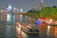 img_himawari_cruise_dinnercharter.jpeg