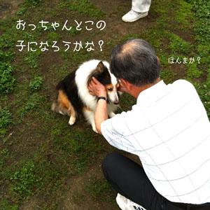 sukisuki.jpg