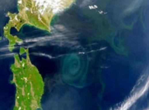 三陸沖に現れた巨大な渦