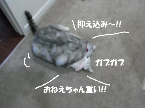 20091027/3