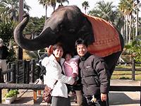 09'フェニックス自然動物園