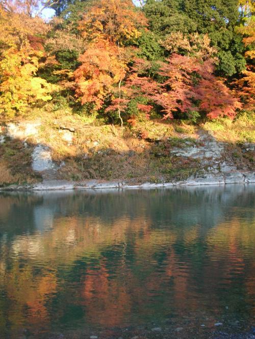 川に写る紅葉
