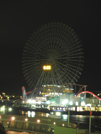 20100107観覧車
