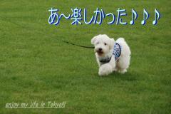 DSC_0585.jpg