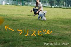 nasudehurisubi-hasiru1.jpg