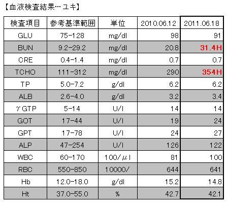 2011.06.18血液検査結果【ユキ】