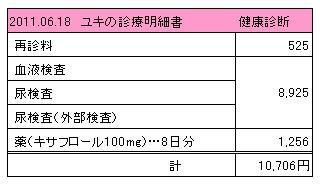 ユキ 2011.06.18診療明細書