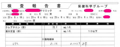 ユキ 検査報告書20110618(一部)