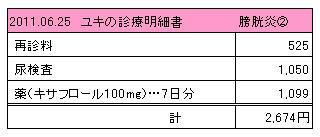 ユキ 2011.06.25診療明細書
