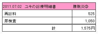 ユキ 2011.07.02診療明細書