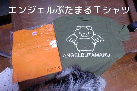 エンジェルぶたまるTシャツ