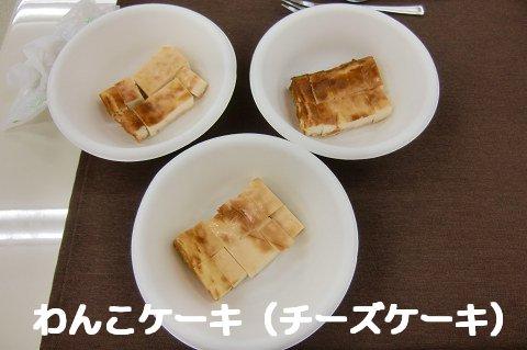 わんこケーキ(チーズケーキ)