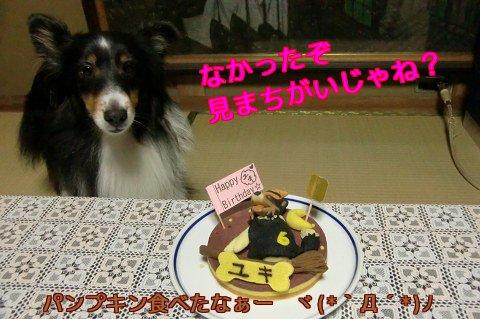 パンプキン食べたなぁーヾ(*`Д´*)ノ