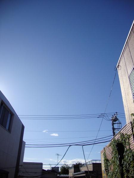 DSC007480001.jpg