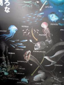 大阪科学技術館 JAMSTECブース(深海生物の紹介)