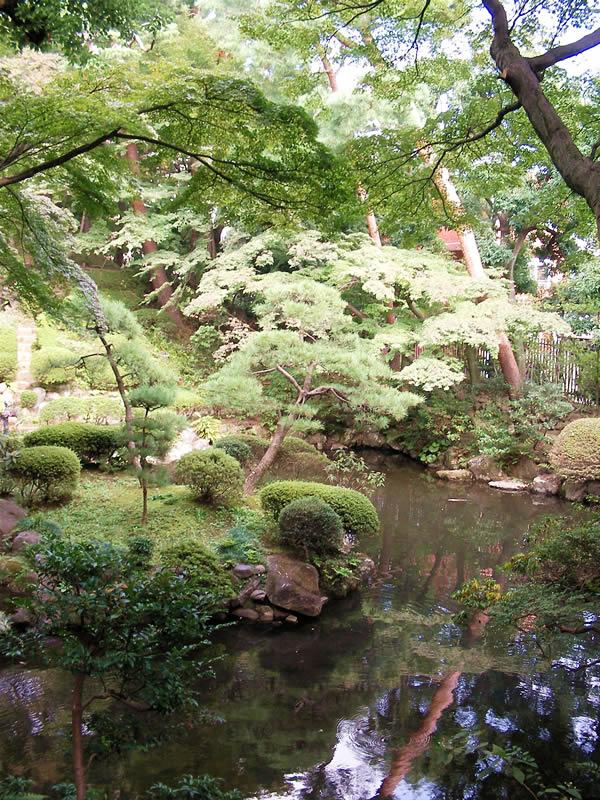 殿ヶ谷公園 池