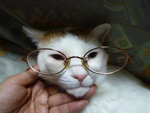 浜ちゃん眼鏡3