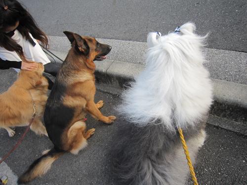 車道に向って並ぶ三人
