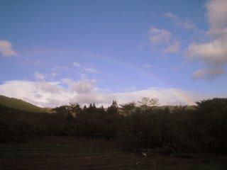 畑に架かる虹