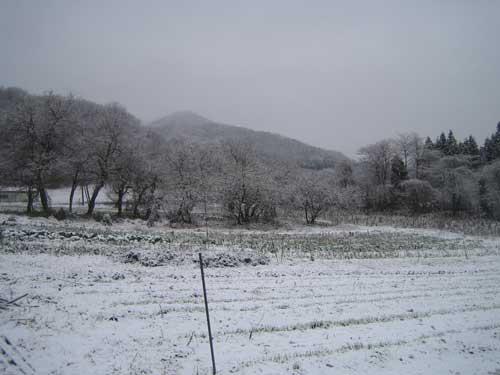 091211_snowsugina.jpg
