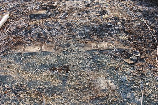 三池浜築堤跡 のコピー
