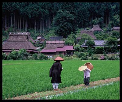 14・「里山の小道」堀井 弘-s
