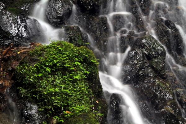 笠形山の滝