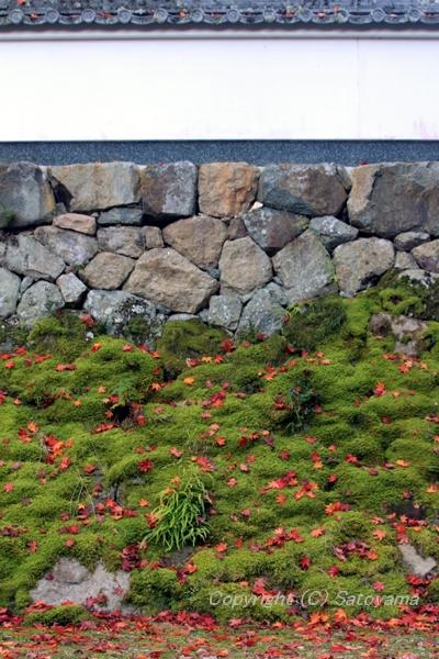 荘厳寺の白壁