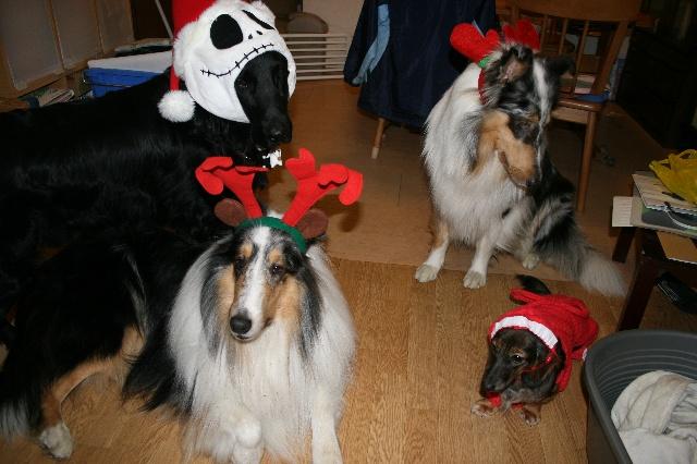 一昨年のクリスマス!