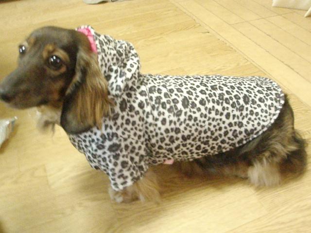 モノ姉Ⅱ号のお年玉で買ったチャミコの冬服です。