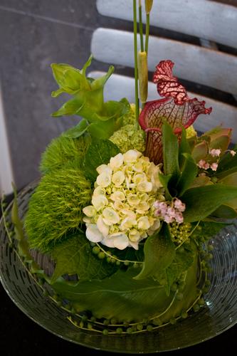 yutori2011.6月