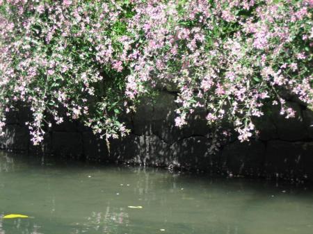 3回目柳川観光 034 - コピー
