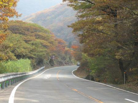 大つり橋 九重 011 - コピー