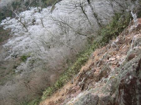 英彦山 022 - コピー
