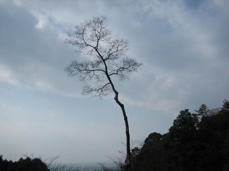 清水正月2日参り 176 - コピー