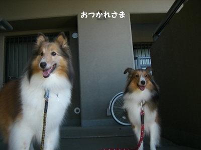 21.8.15 お疲れ様 byかーちゃん