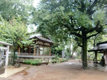 鳩森八幡神社3