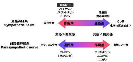 MAO-1