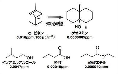 嗅覚閾値-3